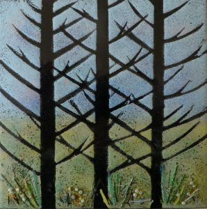 Enamel of fir trees by Jeanette Hannaby