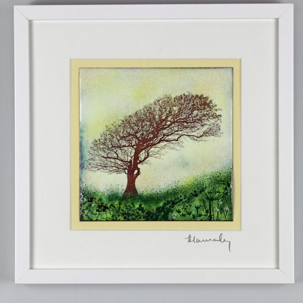 Enamel picture by Jeanette Hannaby. Windswept trees at Stowe Barton, North Cornwall.