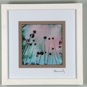 Poppy seed heads enamel picture. By Jeanette Hannaby