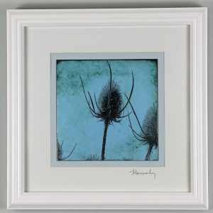 Enamel picture of teasles. Original photo was taken at Nature in Art just outside Gloucester