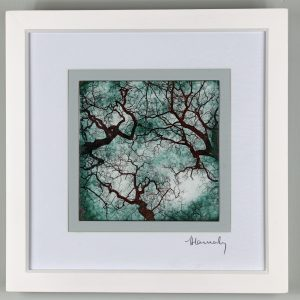 Enamel picture looking up into the tree canopy in the Forest of Dean. By Jeanette Hannaby