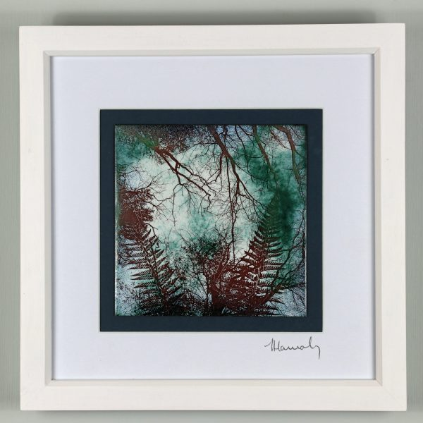 Enamel picture on copper. Puzzlewood in Gloucestershire by Jeanette Hannaby