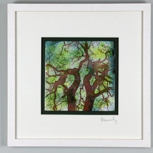Forest oaks enamel picture by Jeanette Hannaby