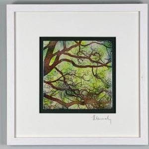 Enamel picture of a heart in an oak tree , in the Forest of Dean, By Jeanette Hannaby