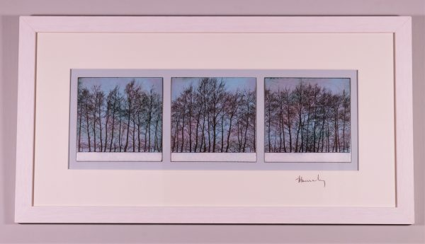 Enamel Triptych of trees at dusk in Linton, Herefordshire