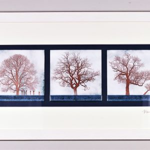 Triptych of three trees enamel on copper by Jeanette Hannaby
